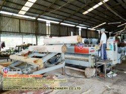 De houten Machine van de Schil van het Vernisje van de Machine voor het Logboek van de Pijnboom van de Populier van 2600mm