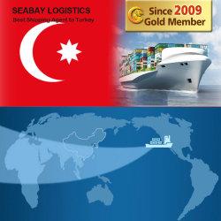 Cheap Fast Fret de la mer de Chine vers la Turquie / Istanbul / Ismir / Mersin