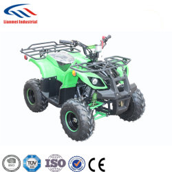 Quatre Wheeler ATV ATV Quad Bike 110cc