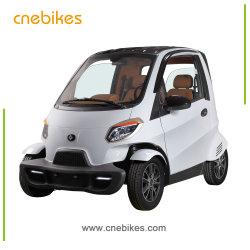 Nuevo producto Smart pequeño coche eléctrico con aire acondicionado opcional