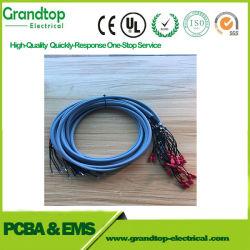 Faisceau de fils de l'automobile électrique Assemblage de câbles du faisceau de fils du moteur