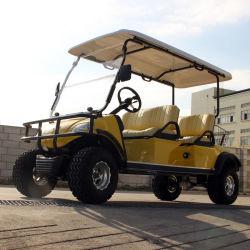 Levantar el coche eléctrico/carro/coche,turismo,Buggy Utilitario (DEL2042D, 4 plazas)