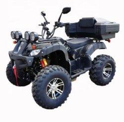 Hot 2000W Electric Adult ATV Quad Bike te koop