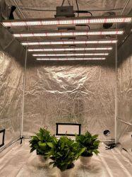 Tollecn 2020 nouvelle conception des voyants LED pour les plantes poussent à LED pour l'intérieur des plantes de gros feux