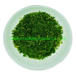 الصين Huitong الأطعمة تجميد الأعشاب الجافة بقدونس أوراق الخضار