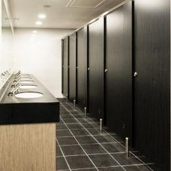 304 cubicoli impermeabili della toletta dell'acquazzone del hardware dell'acciaio inossidabile