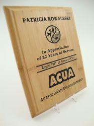 الزخرفية فارغة من خشب الخيزران جوائز لوحة اسم سطح المكتب