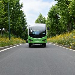 De Chinese Fabriek Aangepaste Juiste Elektrische Auto van de Toerist van de Auto van het Sightseeing van de Leiding Elektrische