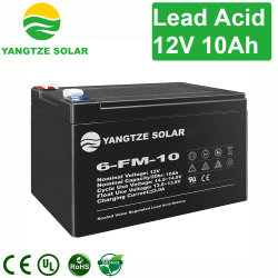 Spedizione gratuita Prostar 12V 10ah 20hr Deep Cycle Battery