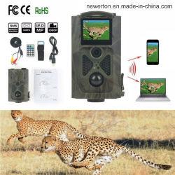 Hc-550HD numérique Sentier chasse des animaux de la came de la caméra 940nm 48 LEDs infrarouges 16MP Caméra vidéo de sport de la faune