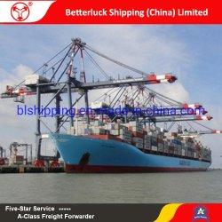 Envío gratuito de transporte de mercancías de China a Rotterdam LCL de transporte de consolidación de los Países Bajos