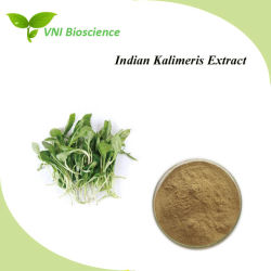 L'iso ha certificato l'estratto indiano dell'erba di Kalimeris/Kalimeris indica/l'estratto pianta di Maran