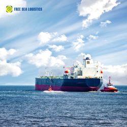 Fracht-Absender-Agens-Seeozean-Verschiffen-Service China der Oberseite-10 preiswertester nach USA BRITISCH