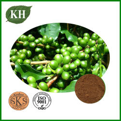 緑のコーヒー豆のエキス50%の総Chlorogenic酸