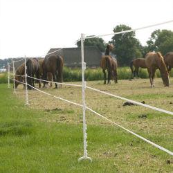 Puesto cerco eléctrico con alta calidad y montarse fácilmente para la comunidad de pastos o Rancho