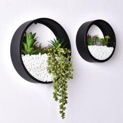 China-Fabrik-hängende Pflanzer-Wand-Dekor-Kunst für Innenpflanzen