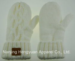 Mittens (HY17071510/HY17071508/HY17071509)가 새로운 형식 여자에 의하여 뜨개질을 했다