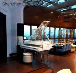 음악 계기 고급 호텔 Pianodisc IQ 선수 시스템에 아크릴 그랜드 피아노 바 웅대한 170