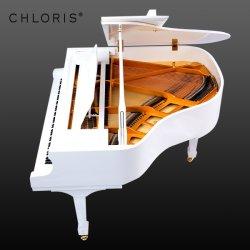 Piano bianco ritenuto Ffw della Germania del Chloris grande, grandi strumenti musicali del piano Hg158W del bambino