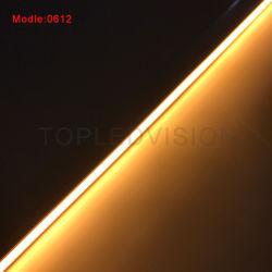 IP67 illuminazione al neon impermeabile SMD LED 2835 12VDC della decorazione della striscia della flessione LED