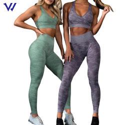 Le ghette del camuffamento di ginnastica di donne hanno impostato il reggiseno ed i pantaloni di yoga hanno impostato l'insieme senza giunte di yoga di usura di sport dell'attrezzatura di usura di forma fisica
