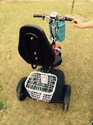 Trois roues scooter électrique avec support de sac de golf (et-ES002-g)