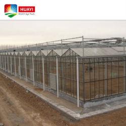 Sterke structuur Hoge windbelasting Greenhouse met glas bedekt warm Gegalvaniseerd stalen frame Hoge Tunnel getinte floatglas Kas
