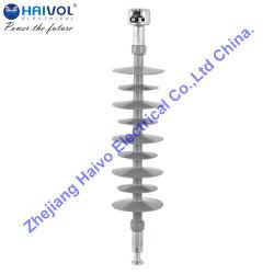 (FXBW4-24/100)長い棒の中断合成物の絶縁体