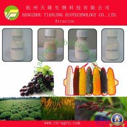 고품질 제초제 아트라진(97% TC, 90% WDG, 80% WDG, 80% WP, 50% WP, 50% SC)