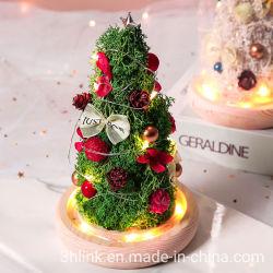 2021 عيد ميلاد المسيح هدية زهرة عيد ميلاد المسيح ديكور عيد ميلاد المسيح أضواء هدية الأفكار