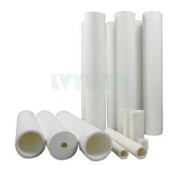 Buis 300mm de Filter van 500mm 700mm 5 van de Poreuze Gesinterde PE Plastic Microns Filter van de Buis voor de Behandeling van het Water van het Zwembad