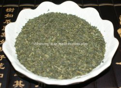 Зеленый сломанных веялки чай оптовые китайского чая