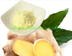 Extrait de racine de gingembre naturel poudre eau soluble 5% Gingerol