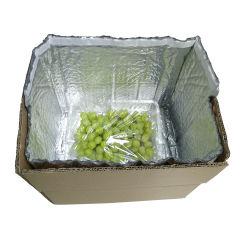 Folha de alumínio com isolamento térmico de bolha de plástico da caixa de isolamento descartáveis térmica sacos de alimentos para o fornecimento de alimentos