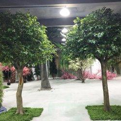 Circuito di collegamento della vetroresina ed alberi di Banyan artificiali dei fogli del tessuto grandi per la decorazione interna del negozio