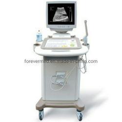 Nuovo tipo tipo sistema diagnostico del carrello di formazione immagine dello scanner di ultrasuono