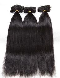 Clip de grado superior en la extensión de cabello humano 100% virgen Hair Extension Lbh 107