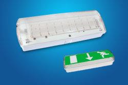 Paratia Emergency ricaricabile con il segno verde del LED
