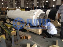 Doppio cilindro idraulico sostituto per la pressa fatta in Cina