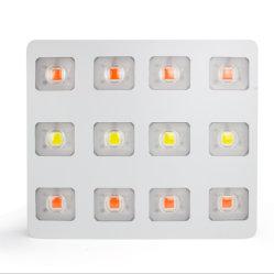 LED de espectro ajustável crescer Luz Lâmpadas de Produção Vegetal Substituir HPS 2000W a partir da fábrica Grande promoção
