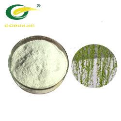 Alta qualidade de vime branco extrato de casca salicilina em pó de OEM