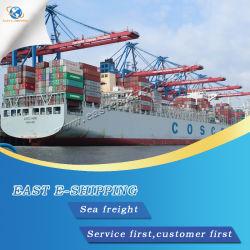 Seefracht-Verschiffen von Shenzhen/von Foshan/von Guangzhou/von Shanghai/von Ningbo/von Qingdao/von Tianjin/von Xiamen zu Istanbul/zu Mersin/zu Izmir/zu Gemlik die Türkei
