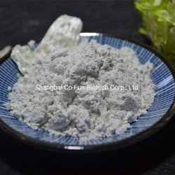 Natureza Mica em pó branco Grau de cosméticos com alta qualidade e melhores preços de fábrica chinesa