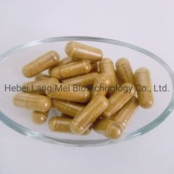 Biokost-Ernährungsergänzung Cordyceps Sinensis Manneskapsel-Eigenmarke