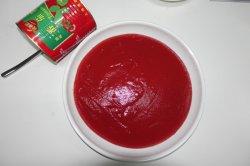 De Beste Prijs van de Ketchup van de Tomaat van het Tin van de Fabriek van China in Ingeblikt