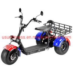 Pneu de gordura Scooter Eléctrico 1500 W eléctrico Motor Triciclo Carga veículo agrícola ATV com marcação CE