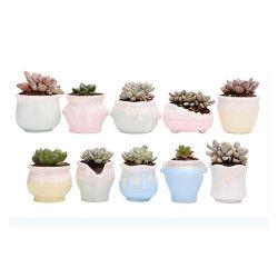 卸し売り陶磁器の小型プラント鍋のサボテンのプラント鍋の植木鉢