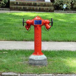 La Fonte Matériau poteau incendie extérieur (Wet Baril type)