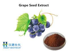 La nature Extrait de pépins de raisin en poudre La promotion de la circulation sanguine et antivieillissement
