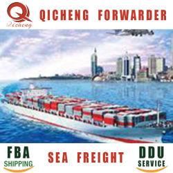 Chambre d'expédition transitaire porte conteneur des services de la mer de Shenzhen à Bremerhaven l'Europe
